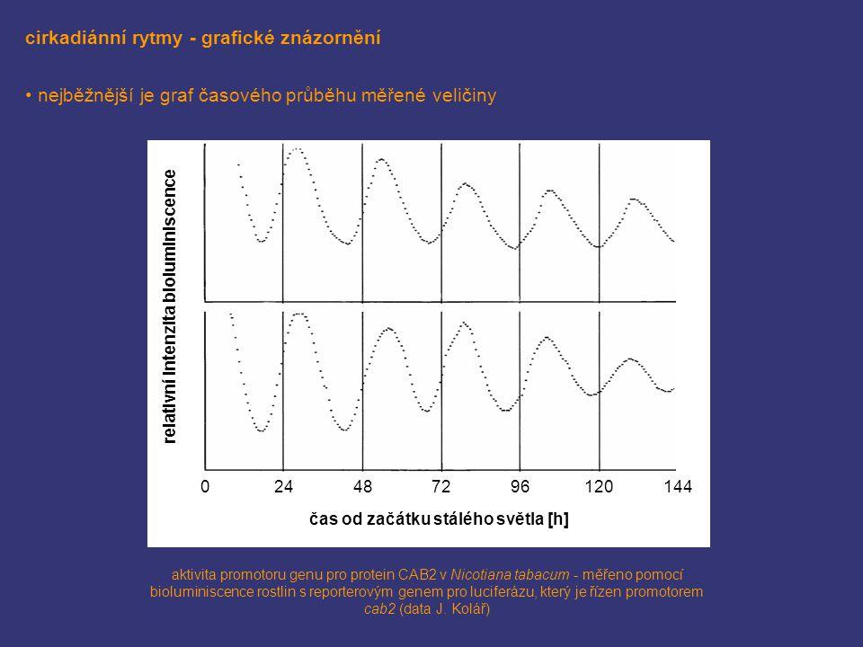 cirkadiánní rytmy - grafické znázornění nejběžnější je graf časového průběhu měřené veličiny relativní intenzita bioluminiscence čas od začátku stáléh