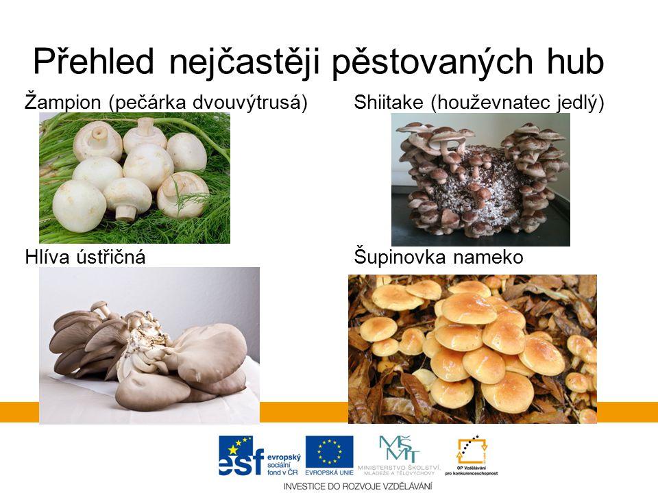 Přehled nejčastěji pěstovaných hub Žampion (pečárka dvouvýtrusá) Shiitake (houževnatec jedlý) Hlíva ústřičná Šupinovka nameko