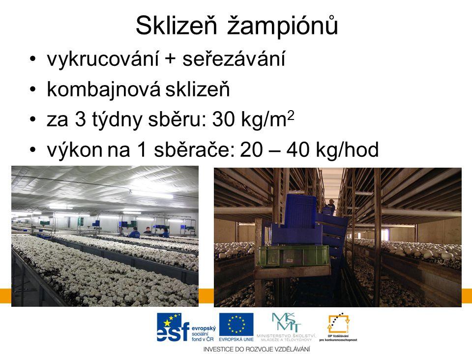Sklizeň žampiónů vykrucování + seřezávání kombajnová sklizeň za 3 týdny sběru: 30 kg/m 2 výkon na 1 sběrače: 20 – 40 kg/hod