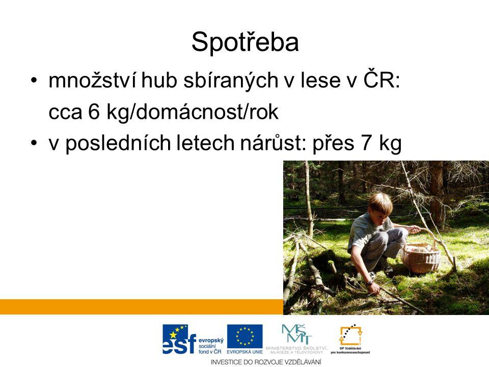 Spotřeba množství hub sbíraných v lese v ČR: cca 6 kg/domácnost/rok v posledních letech nárůst: přes 7 kg