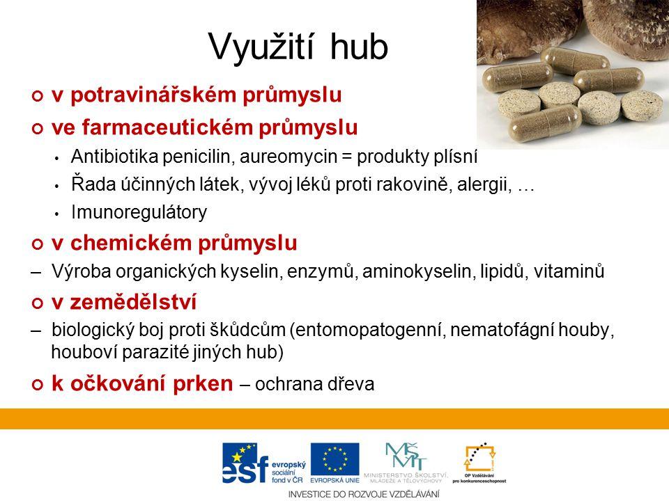 Využití hub v potravinářství Kvasinky – potravinářské technologie –pivovarnický, drožďárenský, mlékárenský a škrobárenský průmysl, výroba vína, atd.