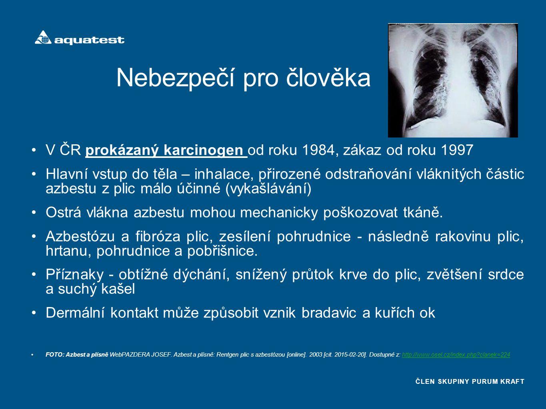 ČLEN SKUPINY PURUM KRAFT Nebezpečí pro člověka V ČR prokázaný karcinogen od roku 1984, zákaz od roku 1997 Hlavní vstup do těla – inhalace, přirozené odstraňování vláknitých částic azbestu z plic málo účinné (vykašlávání) Ostrá vlákna azbestu mohou mechanicky poškozovat tkáně.