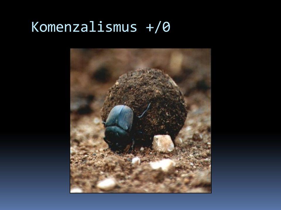 Komenzalismus +/0