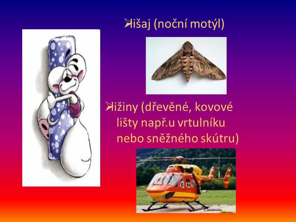  lišaj (noční motýl)  ližiny (dřevěné, kovové lišty např.u vrtulníku nebo sněžného skútru)