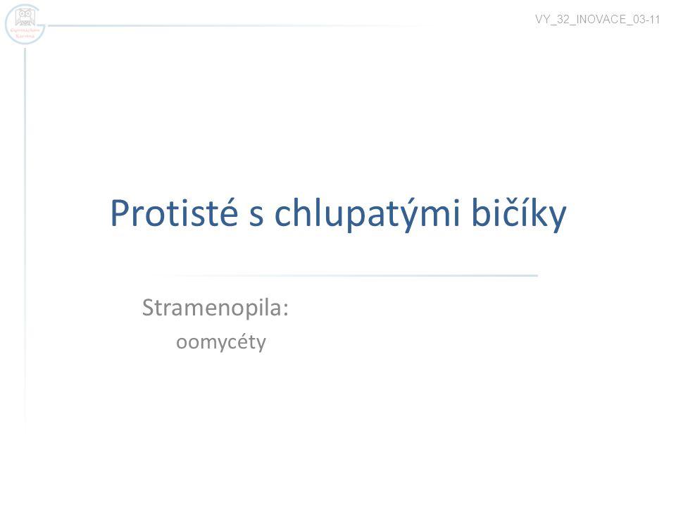 Protisté s chlupatými bičíky Stramenopila: oomycéty VY_32_INOVACE_03-11