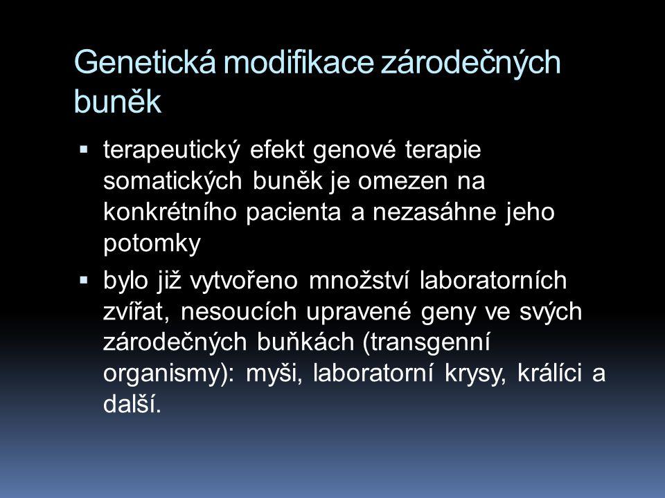Genetická modifikace zárodečných buněk  terapeutický efekt genové terapie somatických buněk je omezen na konkrétního pacienta a nezasáhne jeho potomky  bylo již vytvořeno množství laboratorních zvířat, nesoucích upravené geny ve svých zárodečných buňkách (transgenní organismy): myši, laboratorní krysy, králíci a další.