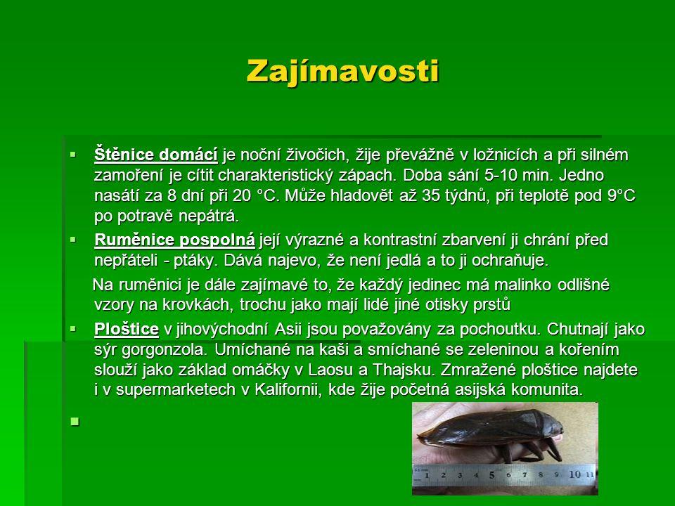 Zajímavosti  Štěnice domácí je noční živočich, žije převážně v ložnicích a při silném zamoření je cítit charakteristický zápach. Doba sání 5-10 min.