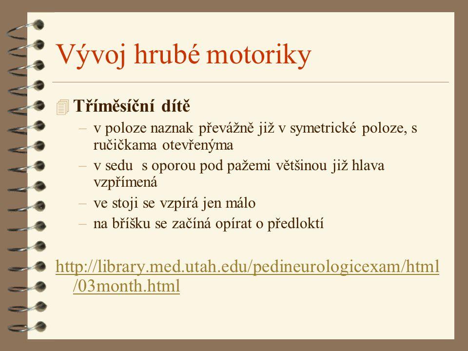 Vývoj hrubé motoriky 4 Tříměsíční dítě –v poloze naznak převážně již v symetrické poloze, s ručičkama otevřenýma –v sedu s oporou pod pažemi většinou již hlava vzpřímená –ve stoji se vzpírá jen málo –na bříšku se začíná opírat o předloktí http://library.med.utah.edu/pedineurologicexam/html /03month.html