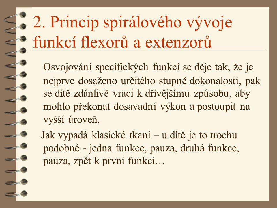 2. Princip spirálového vývoje funkcí flexorů a extenzorů Osvojování specifických funkcí se děje tak, že je nejprve dosaženo určitého stupně dokonalost
