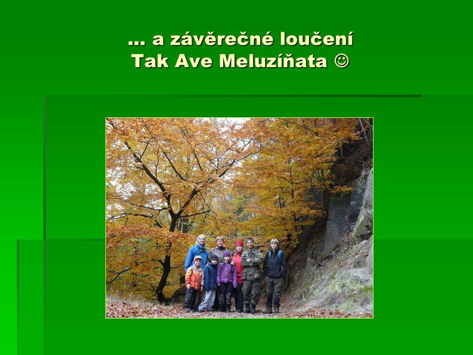 … a závěrečné loučení Tak Ave Meluzíňata … a závěrečné loučení Tak Ave Meluzíňata