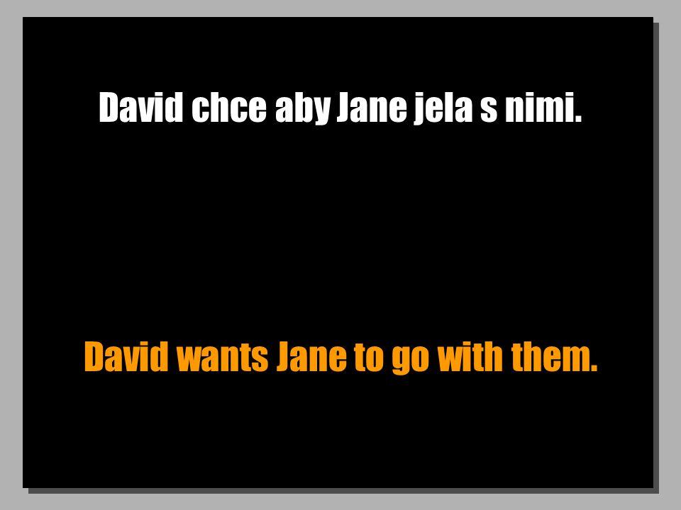 David chce aby Jane jela s nimi. David wants Jane to go with them.