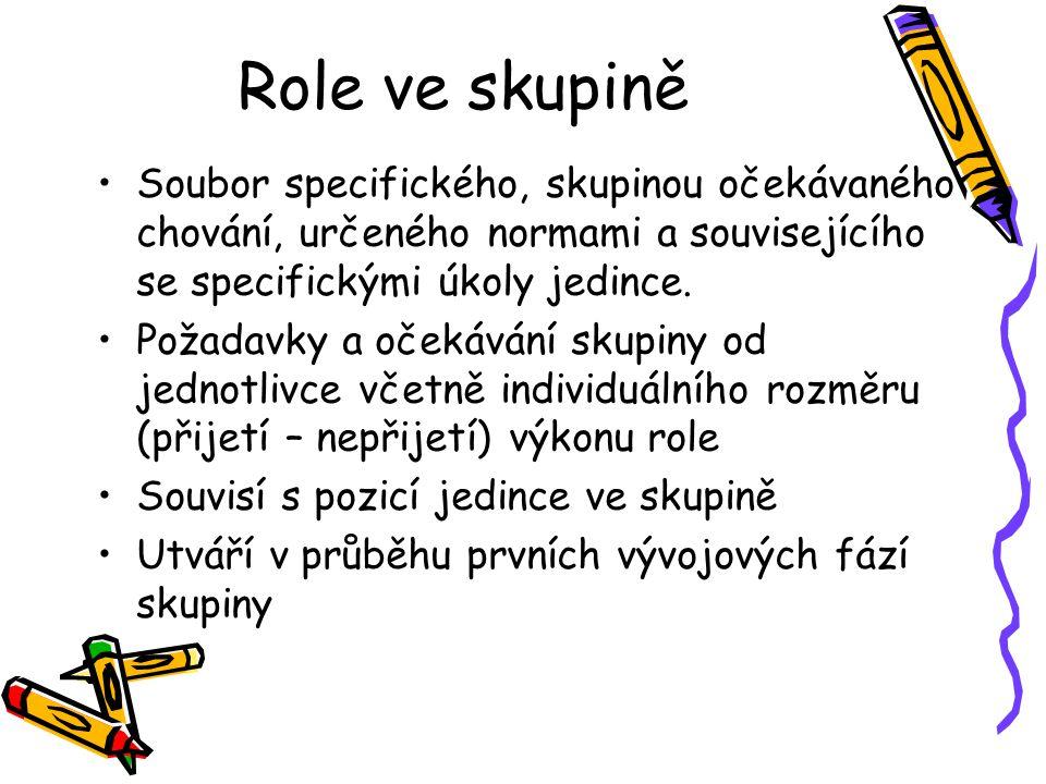 Role ve skupině Soubor specifického, skupinou očekávaného chování, určeného normami a souvisejícího se specifickými úkoly jedince. Požadavky a očekává