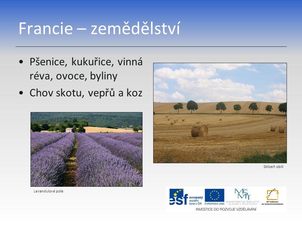 Francie – zemědělství Pšenice, kukuřice, vinná réva, ovoce, byliny Chov skotu, vepřů a koz Sklizeň obilí Levandulové pole