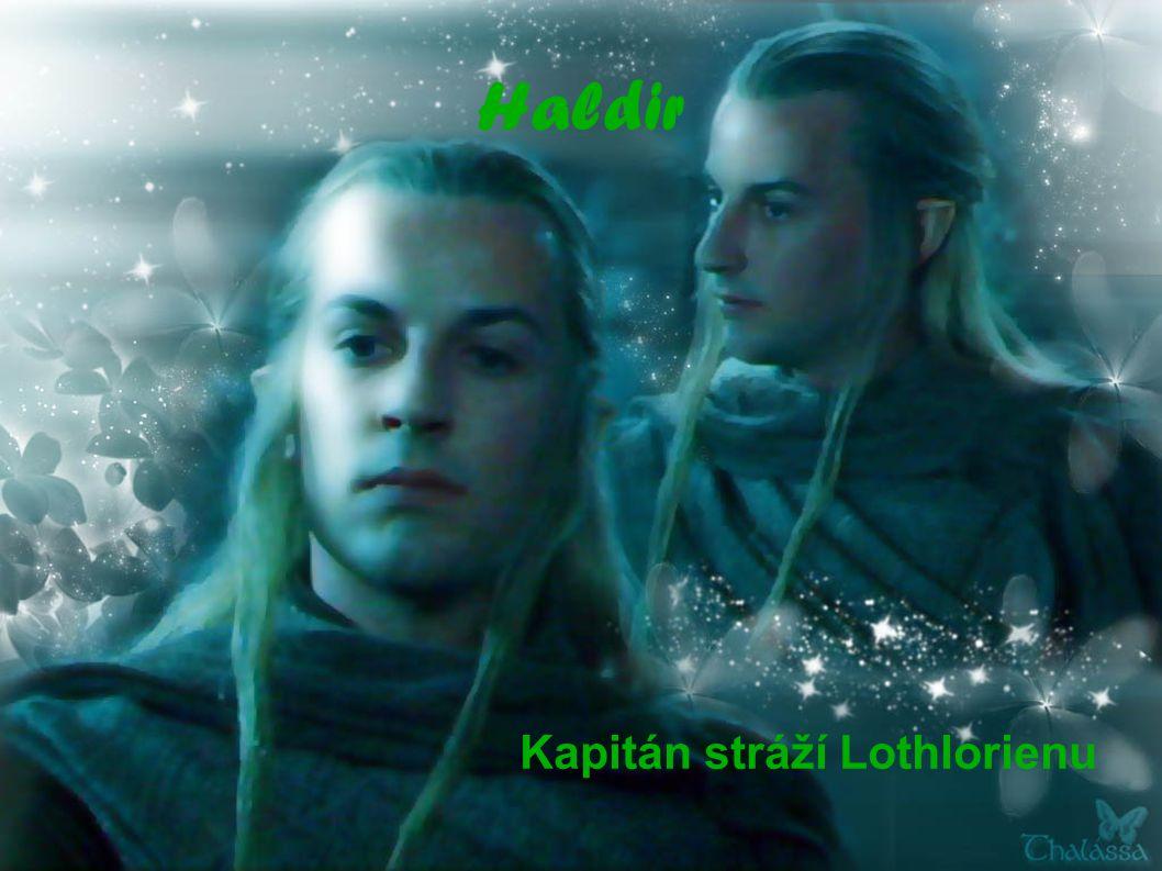 Haldir Kapitán stráží Lothlorienu
