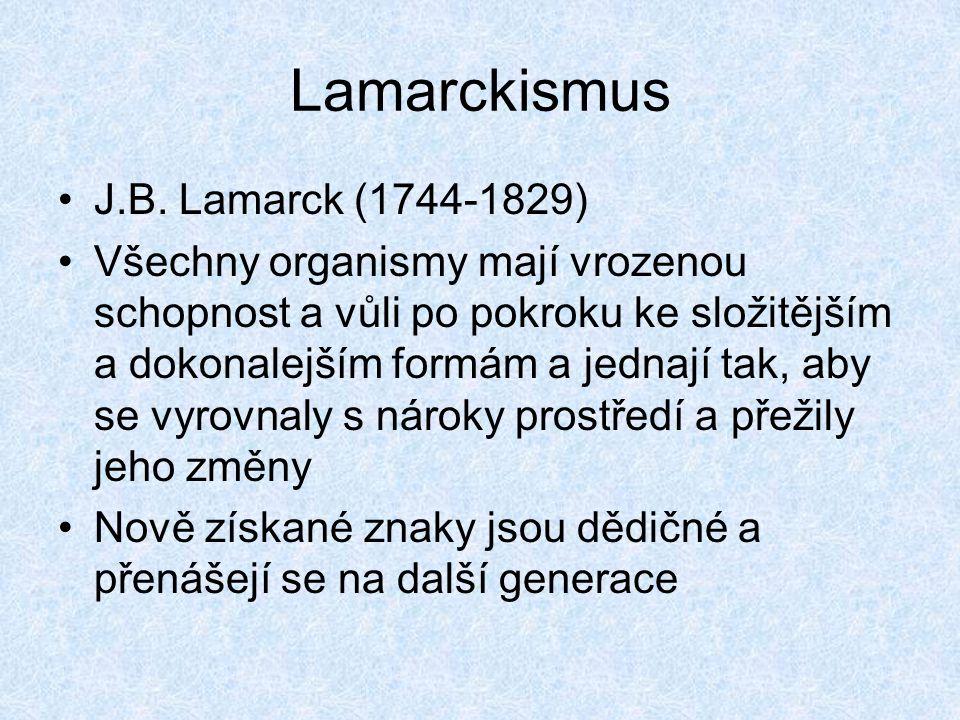 Lamarckismus J.B. Lamarck (1744-1829) Všechny organismy mají vrozenou schopnost a vůli po pokroku ke složitějším a dokonalejším formám a jednají tak,