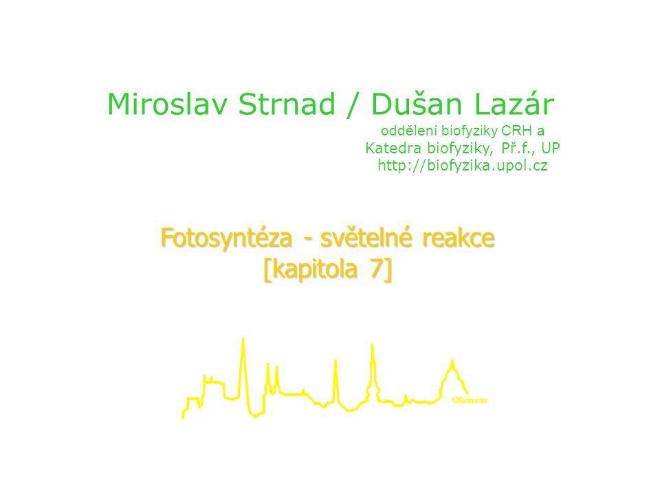 Miroslav Strnad / Dušan Lazár Fotosyntéza - světelné reakce [kapitola 7] oddělení biofyziky CRH a Katedra biofyziky, Př.f., UP http://biofyzika.upol.c