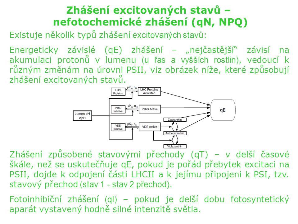 """Zhášení excitovaných stavů – nefotochemické zhášení (qN, NPQ) Existuje několik typů zhášení excitovaných stavů : Energeticky závislé (qE) zhášení – """"n"""