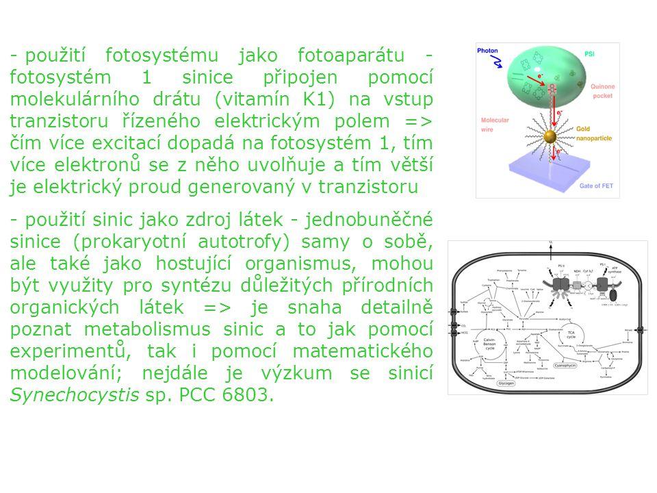 - použití fotosystému jako fotoaparátu - fotosystém 1 sinice připojen pomocí molekulárního drátu (vitamín K1) na vstup tranzistoru řízeného elektrický