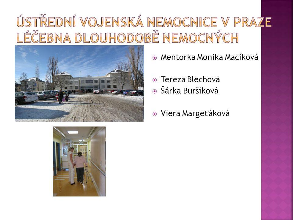  Mentorka Monika Macíková  Tereza Blechová  Šárka Buršíková  Viera Margeťáková