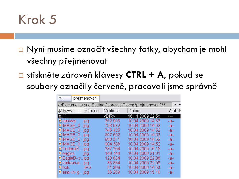 Krok 6  Nyní stiskněte klávesy CTRL+M  Objeví se následující obrazovka Hromadné přejmenování souborů/složek