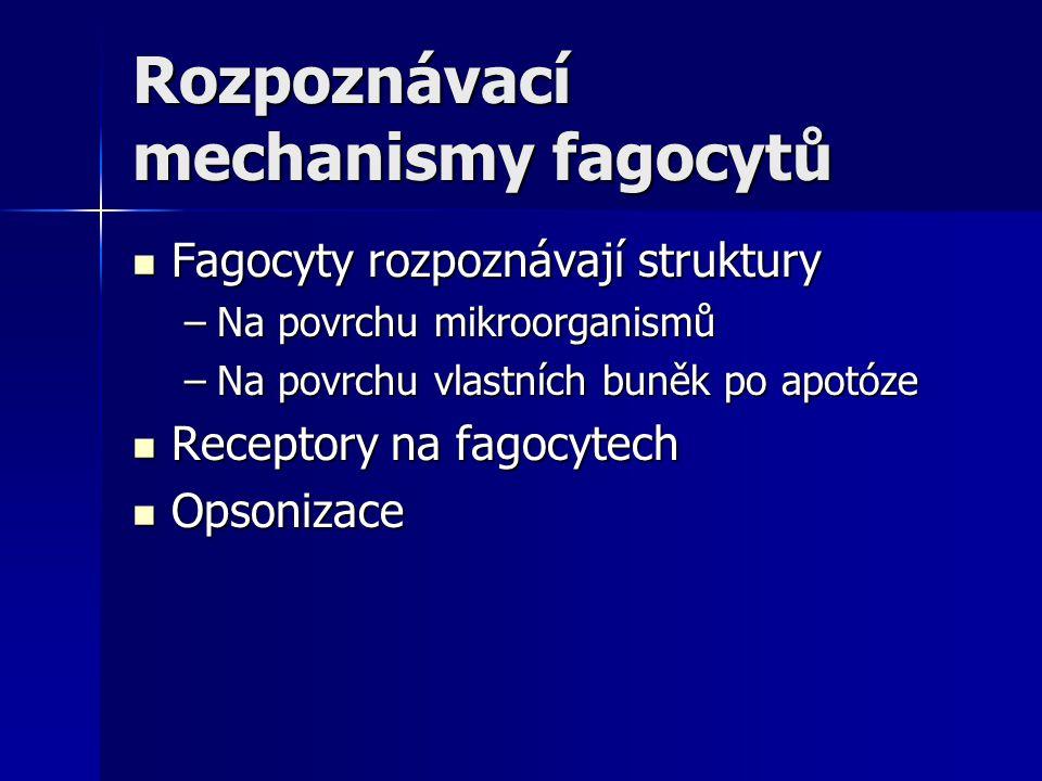 Rozpoznávací mechanismy fagocytů Fagocyty rozpoznávají struktury Fagocyty rozpoznávají struktury –Na povrchu mikroorganismů –Na povrchu vlastních buně