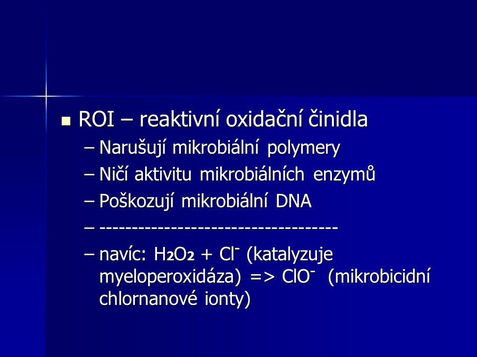 ROI – reaktivní oxidační činidla ROI – reaktivní oxidační činidla –Narušují mikrobiální polymery –Ničí aktivitu mikrobiálních enzymů –Poškozují mikrob