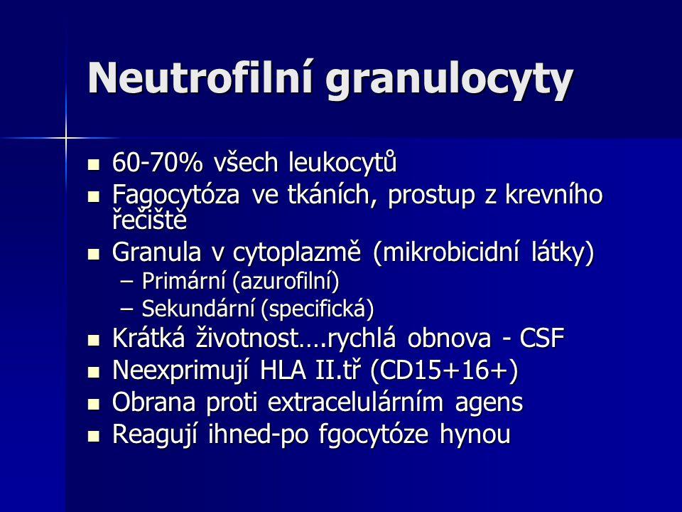 Neutrofilní granulocyty 60-70% všech leukocytů 60-70% všech leukocytů Fagocytóza ve tkáních, prostup z krevního řečiště Fagocytóza ve tkáních, prostup