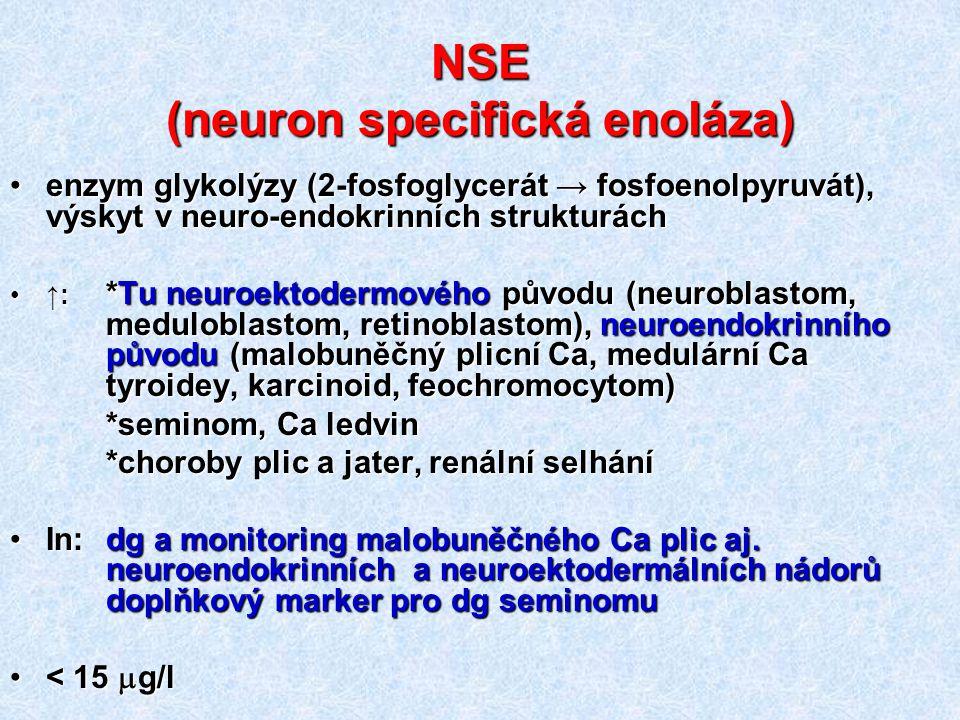 NSE (neuron specifická enoláza) enzym glykolýzy (2-fosfoglycerát → fosfoenolpyruvát), výskyt v neuro-endokrinních strukturáchenzym glykolýzy (2-fosfog