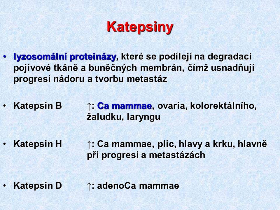 Katepsiny lyzosomální proteinázy, které se podílejí na degradaci pojivové tkáně a buněčných membrán, čímž usnadňují progresi nádoru a tvorbu metastázl