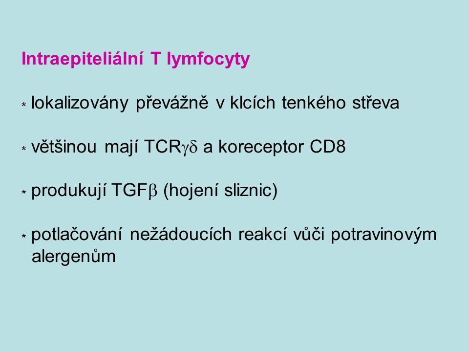 Intraepiteliální T lymfocyty * lokalizovány převážně v klcích tenkého střeva * většinou mají TCR  a koreceptor CD8 * produkují TGF  (hojení sliznic