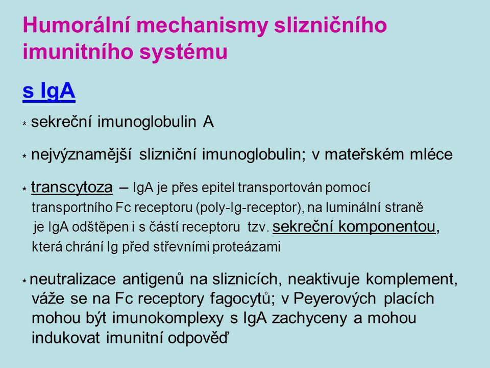 Humorální mechanismy slizničního imunitního systému s IgA * sekreční imunoglobulin A * nejvýznamější slizniční imunoglobulin; v mateřském mléce * tran