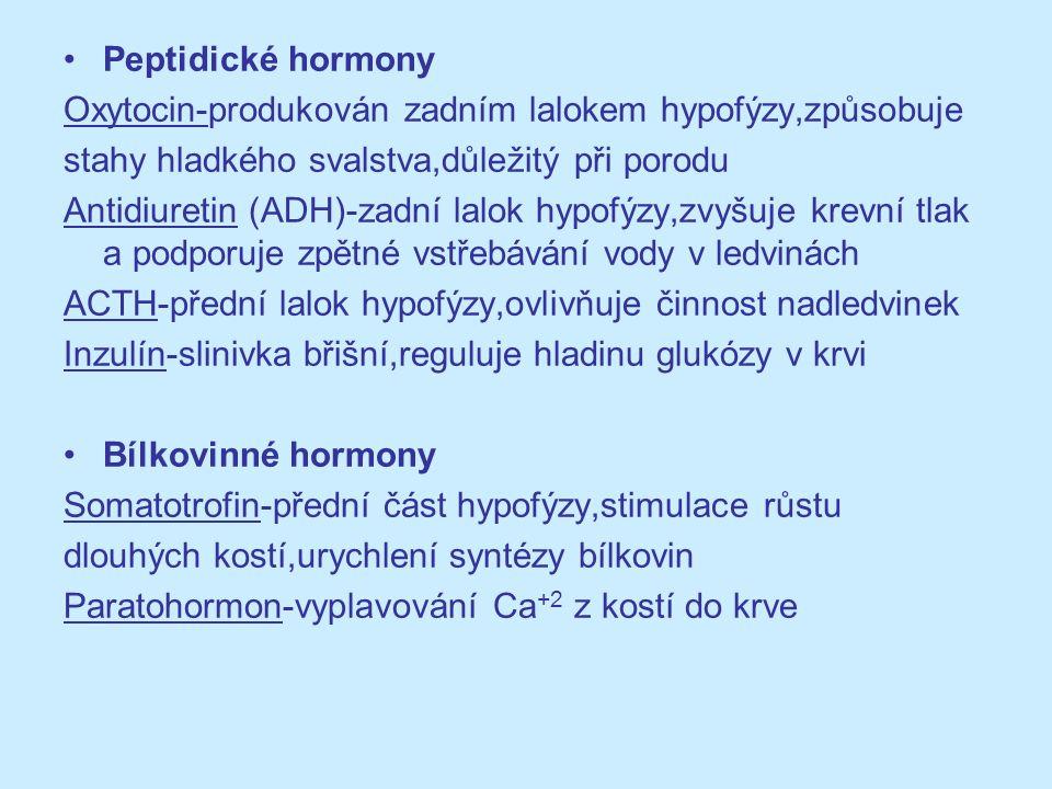 Peptidické hormony Oxytocin-produkován zadním lalokem hypofýzy,způsobuje stahy hladkého svalstva,důležitý při porodu Antidiuretin (ADH)-zadní lalok hy