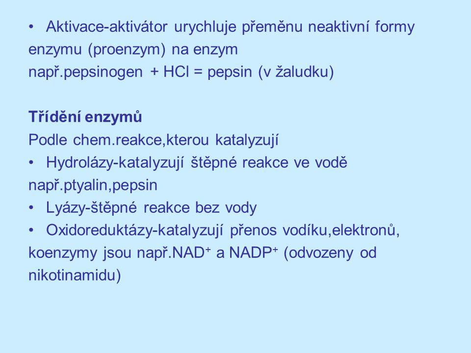 Aktivace-aktivátor urychluje přeměnu neaktivní formy enzymu (proenzym) na enzym např.pepsinogen + HCl = pepsin (v žaludku) Třídění enzymů Podle chem.r