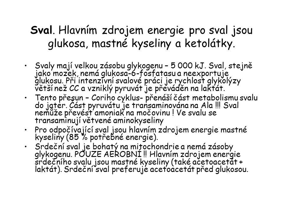 Sval. Hlavním zdrojem energie pro sval jsou glukosa, mastné kyseliny a ketolátky. Svaly mají velkou zásobu glykogenu – 5 000 kJ. Sval, stejně jako moz