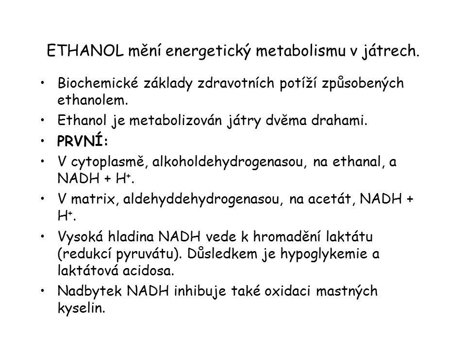 ETHANOL mění energetický metabolismu v játrech. Biochemické základy zdravotních potíží způsobených ethanolem. Ethanol je metabolizován játry dvěma dra