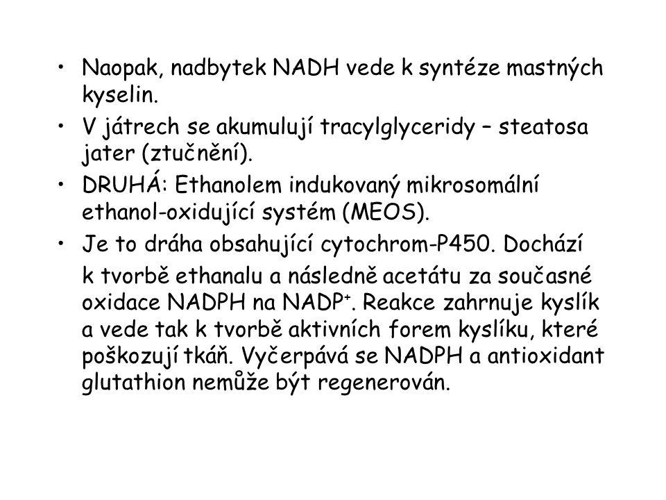 Naopak, nadbytek NADH vede k syntéze mastných kyselin. V játrech se akumulují tracylglyceridy – steatosa jater (ztučnění). DRUHÁ: Ethanolem indukovaný