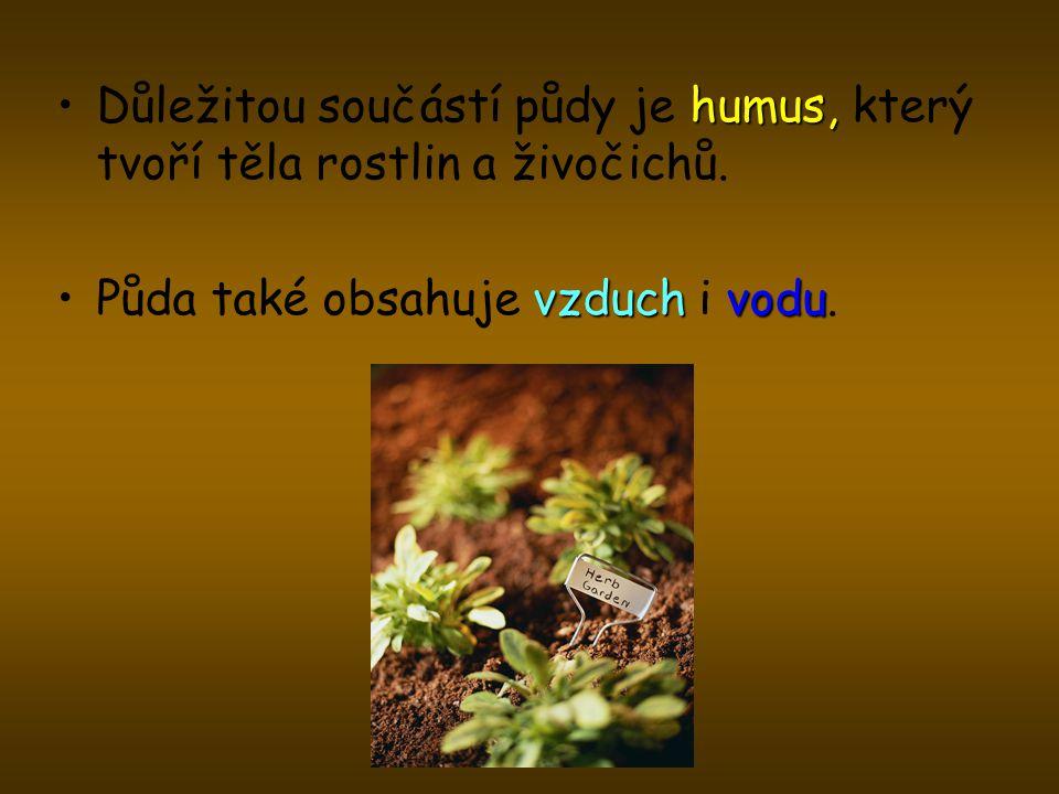 humus,Důležitou součástí půdy je humus, který tvoří těla rostlin a živočichů. vzduchvoduPůda také obsahuje vzduch i vodu.