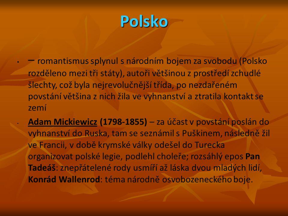 Polsko – romantismus splynul s národním bojem za svobodu (Polsko rozděleno mezi tři státy), autoři většinou z prostředí zchudlé šlechty, což byla nejr