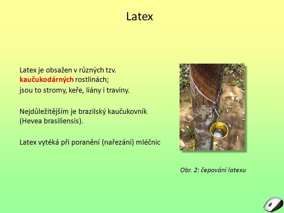 Latex Latex je obsažen v různých tzv. kaučukodárných rostlinách; jsou to stromy, keře, liány i traviny. Nejdůležitějším je brazilský kaučukovník (Heve