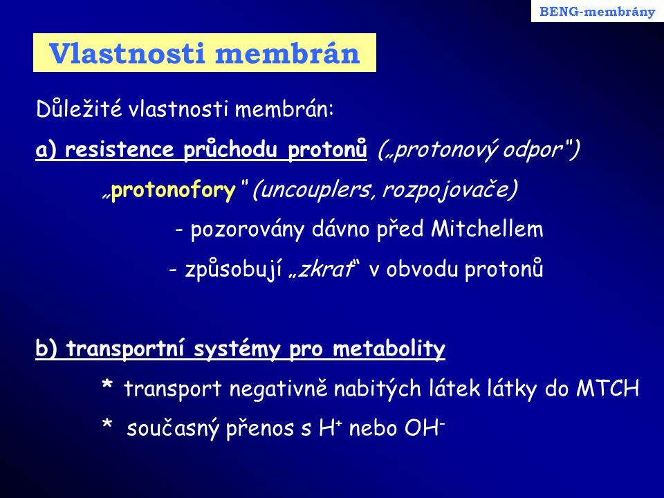 """Vlastnosti membrán Důležité vlastnosti membrán: a) resistence průchodu protonů (""""protonový odpor"""") """"protonofory"""" (uncouplers, rozpojovače) - pozorován"""