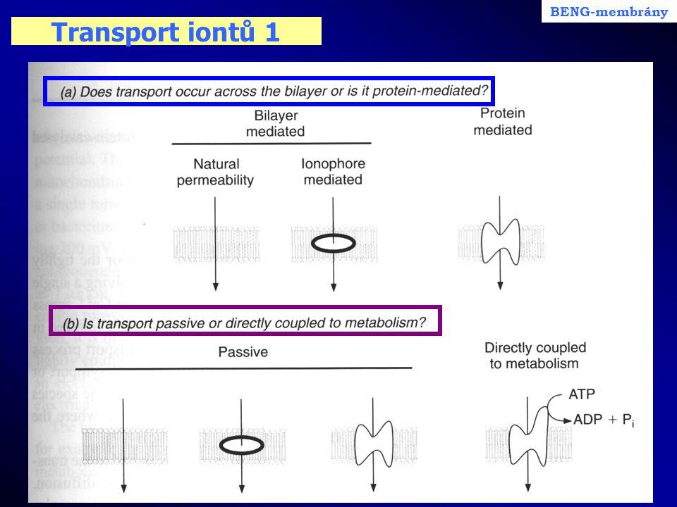 Transport iontů 1 BENG-membrány