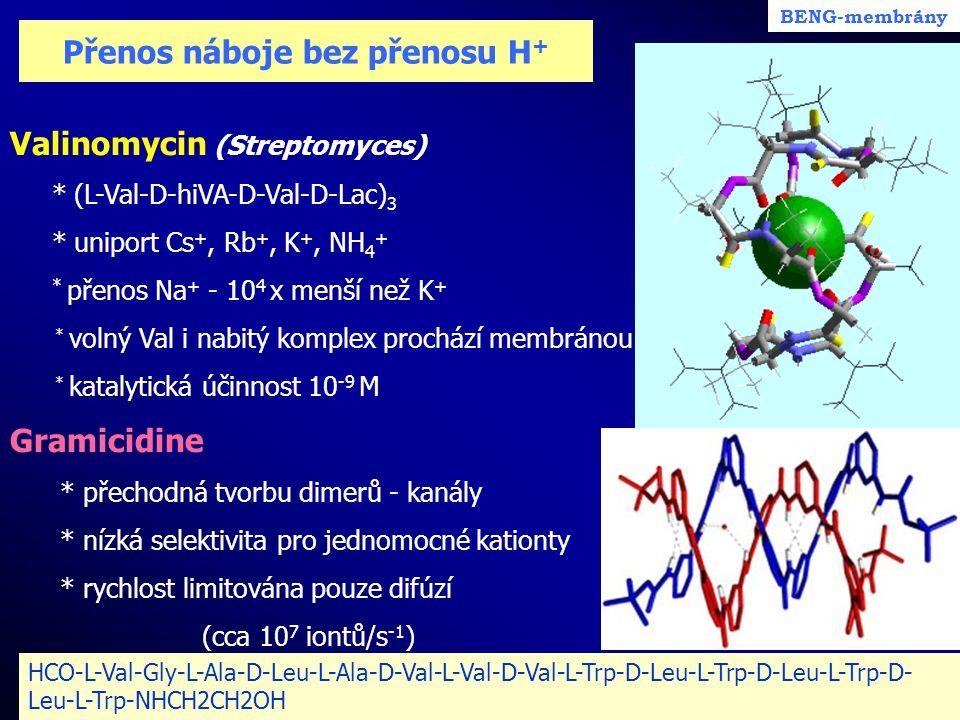 Přenos náboje bez přenosu H + Valinomycin (Streptomyces) * (L-Val-D-hiVA-D-Val-D-Lac) 3 * uniport Cs +, Rb +, K +, NH 4 + * přenos Na + - 10 4 x menší