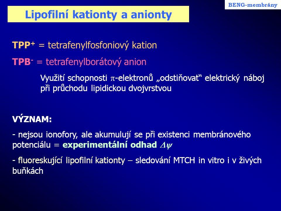 """Lipofilní kationty a anionty TPP + = tetrafenylfosfoniový kation TPB - = tetrafenylborátový anion Využití schopnosti  -elektronů """"odstiňovat"""" elektri"""