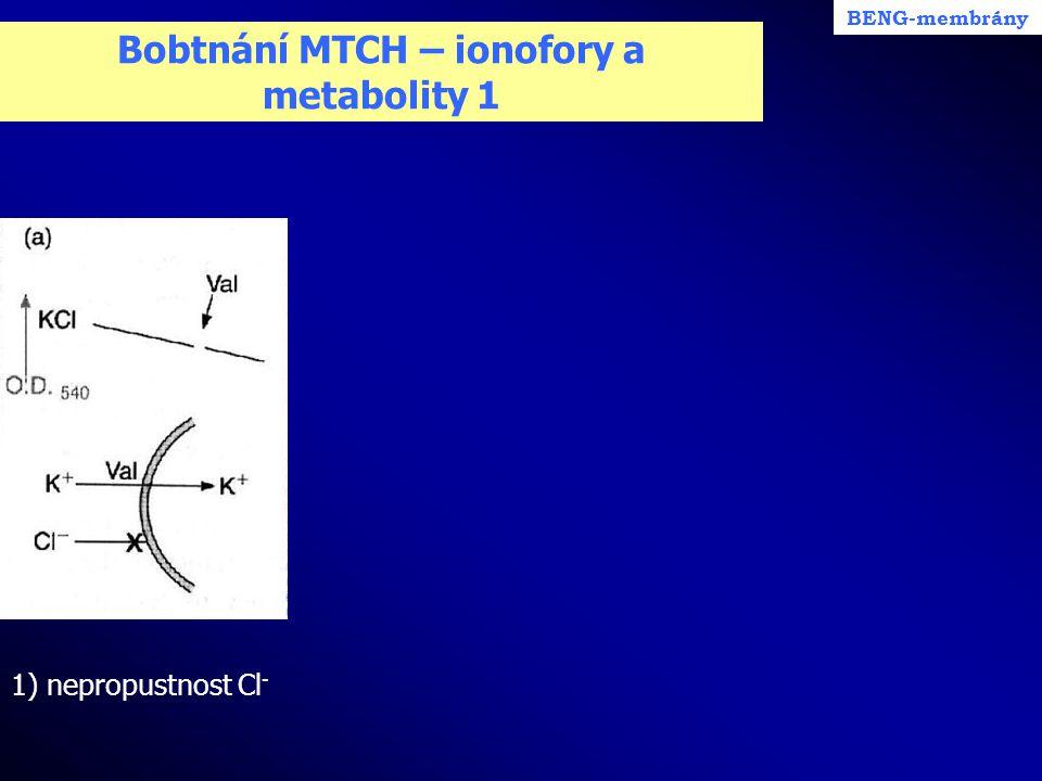 Bobtnání MTCH – ionofory a metabolity 1 1) nepropustnost Cl - BENG-membrány