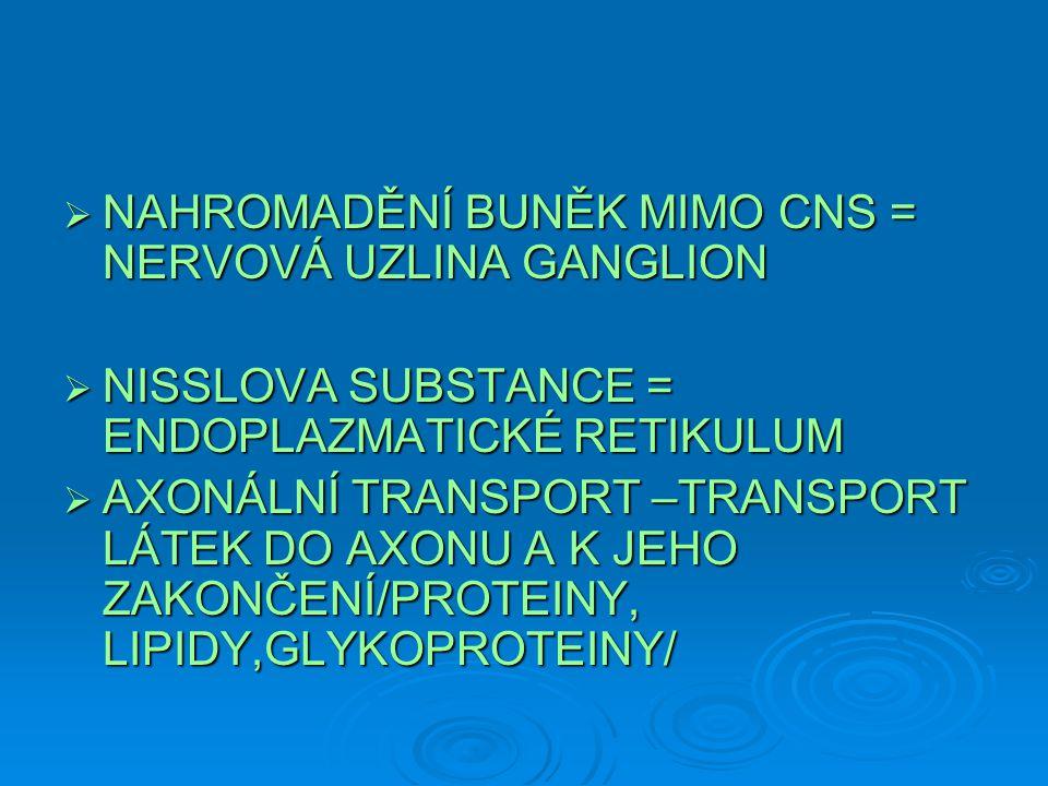  NAHROMADĚNÍ BUNĚK MIMO CNS = NERVOVÁ UZLINA GANGLION  NISSLOVA SUBSTANCE = ENDOPLAZMATICKÉ RETIKULUM  AXONÁLNÍ TRANSPORT –TRANSPORT LÁTEK DO AXONU