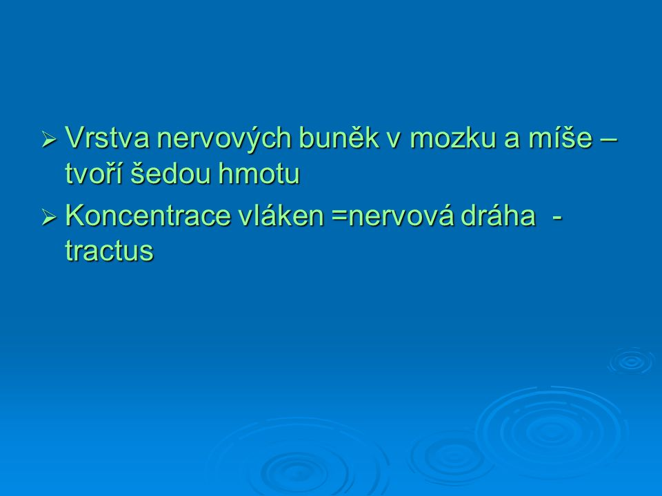  Vrstva nervových buněk v mozku a míše – tvoří šedou hmotu  Koncentrace vláken =nervová dráha - tractus