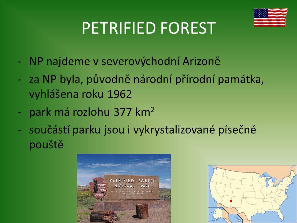 PETRIFIED FOREST -NP najdeme v severovýchodní Arizoně -za NP byla, původně národní přírodní památka, vyhlášena roku 1962 -park má rozlohu 377 km 2 -součástí parku jsou i vykrystalizované písečné pouště