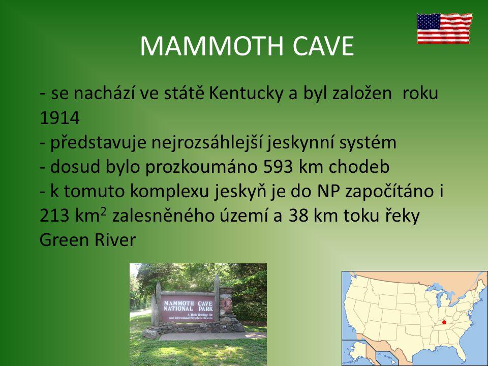 MAMMOTH CAVE - se nachází ve státě Kentucky a byl založen roku 1914 - představuje nejrozsáhlejší jeskynní systém - dosud bylo prozkoumáno 593 km chodeb - k tomuto komplexu jeskyň je do NP započítáno i 213 km 2 zalesněného území a 38 km toku řeky Green River