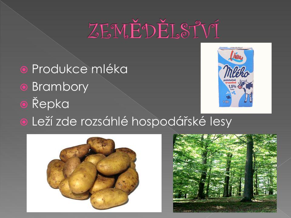  Produkce mléka  Brambory  Řepka  Leží zde rozsáhlé hospodářské lesy