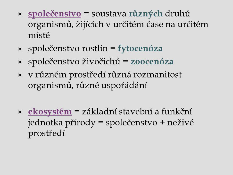  společenstvo = soustava různých druhů organismů, žijících v určitém čase na určitém místě  společenstvo rostlin = fytocenóza  společenstvo živočic